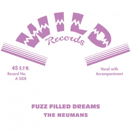 Fuzz Filled Dreams